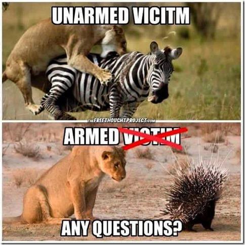 ArmedVsUnarmed