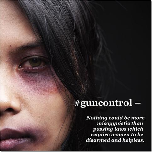 MisogynisticGunControl